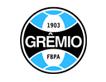 Spazzinitur - Clientes fretamento Grêmio