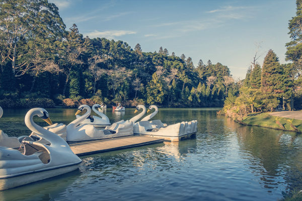 Lago Negro e seus pedalinhos - Roteiro turístico Spazzinitur